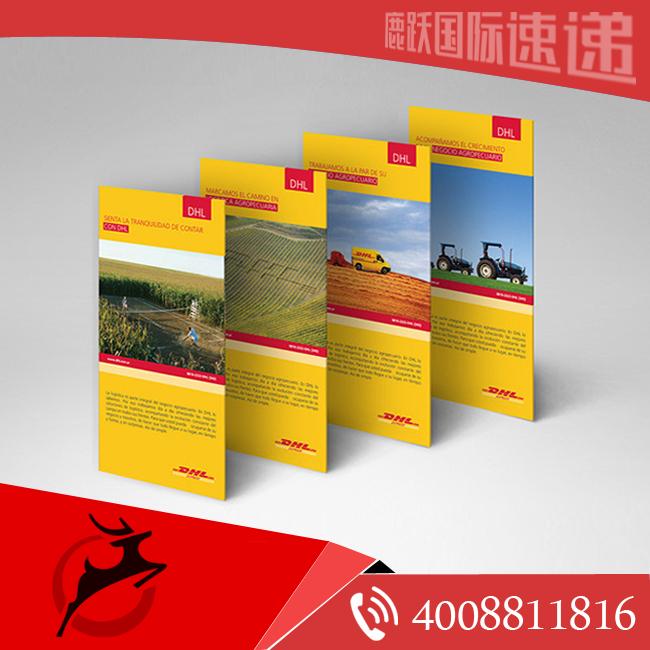国际快递 dhl国际快递 dhl端午假期服务安排 上海dhl电话 上海国际快递电话