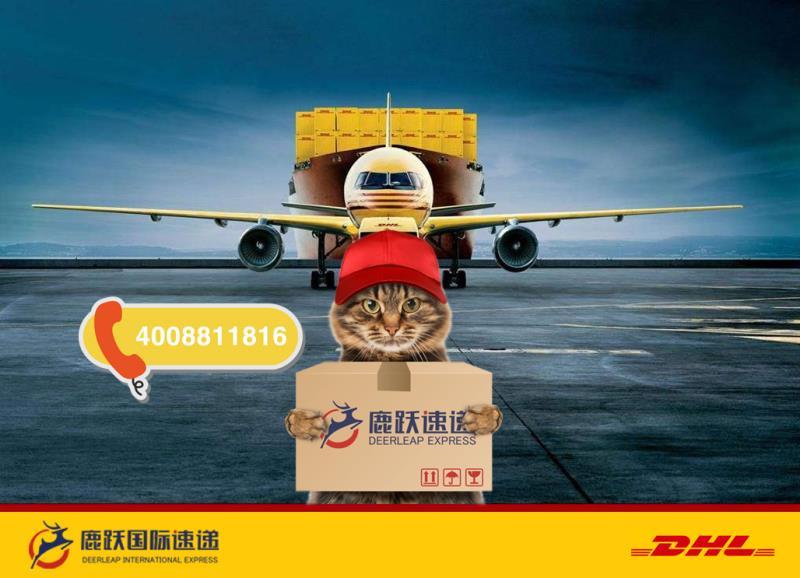 国际快递包裹扣件原因说明 鹿跃国际速递 国际快递