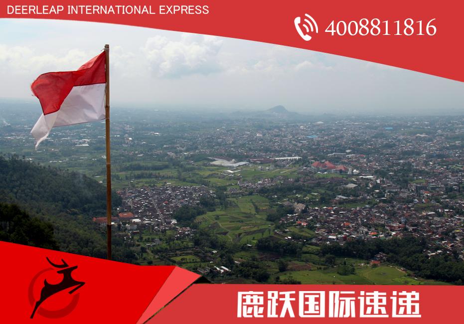 国际快递 dhl国际快递 上海国际快递电话 上海dhl国际快递电话 上海dhl电话 国际快递到印尼