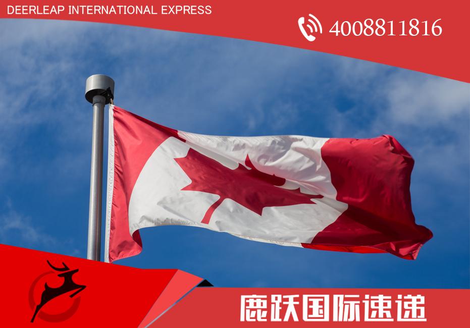 国际快递到加拿大 加拿大国际快递 国际快递 上海国际快递电话 加拿大禁止入境物品 上海国际快递电话 dhl国际快递 tnt国际快递 fedex国际快递 ups国际快递 ems国际快递
