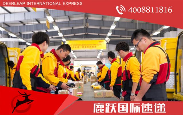 DHL 德国邮政 DHL国际快递 鹿跃国际快递 国际快递 国际快递服务